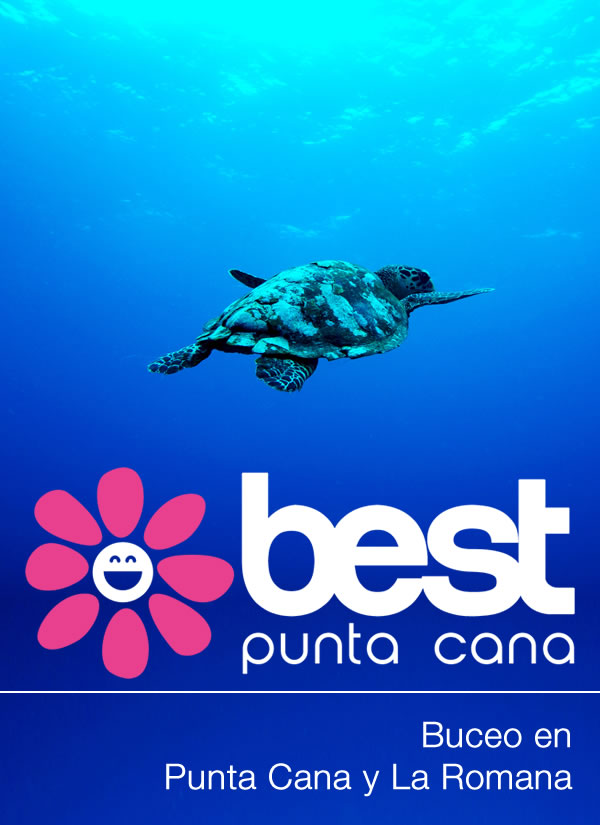 Buceo Bávaro y Punta Cana